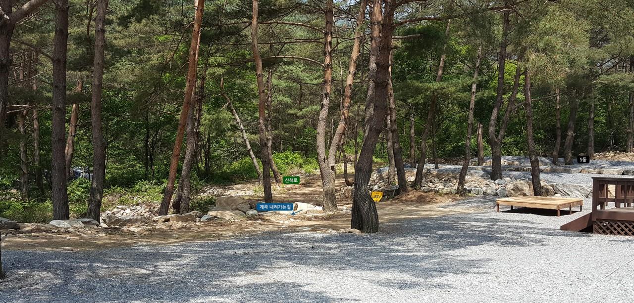 캠핑장S-1