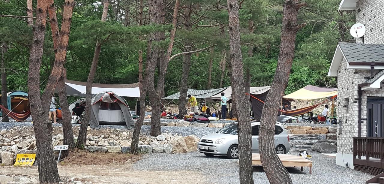 캠핑장S-12
